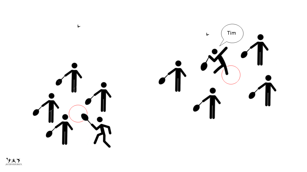 Dauphin dauphine variante badminton