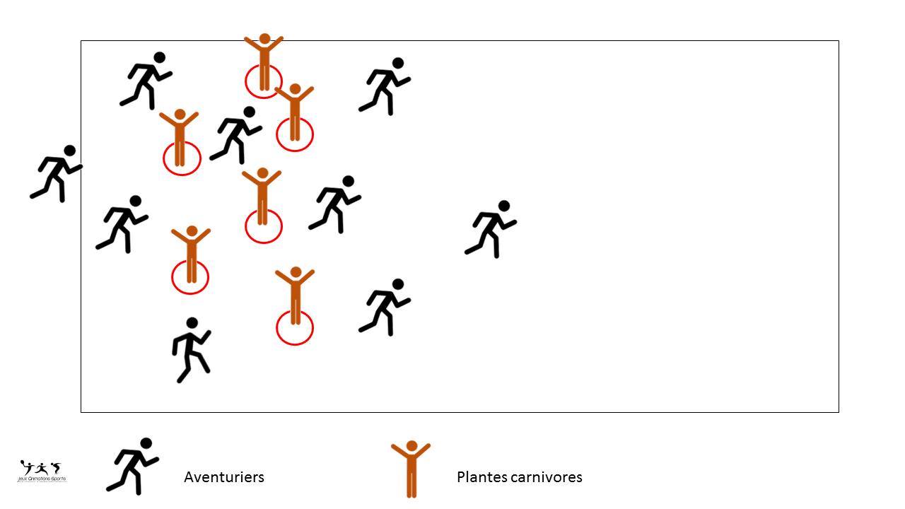 Les aventuriers et les plantes carnivores - Jeu pour les cycles 1 et 2